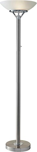 Adesso Home 5023-22 Transitional Light Floor Lamp from Expo Collection in Two-Tone Finish, Brushed Steel w. Chrome Accents