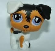 Littlest Pet Shop Jack Russell Terrier #803