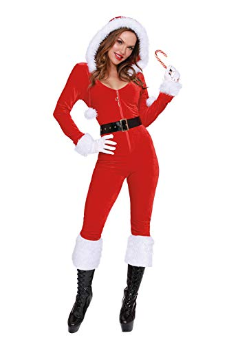 Dreamgirl Women's Ms. Claus, Costume, Small