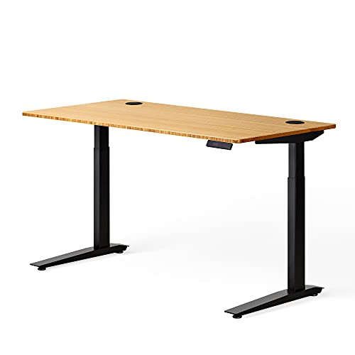 Fully Jarvis Standing Desk 48' x 30' Bamboo Top - Electric Adjustable Desk Height from 30' to 49.3' with Memory Preset Controller (Rectangle, Black Frame)