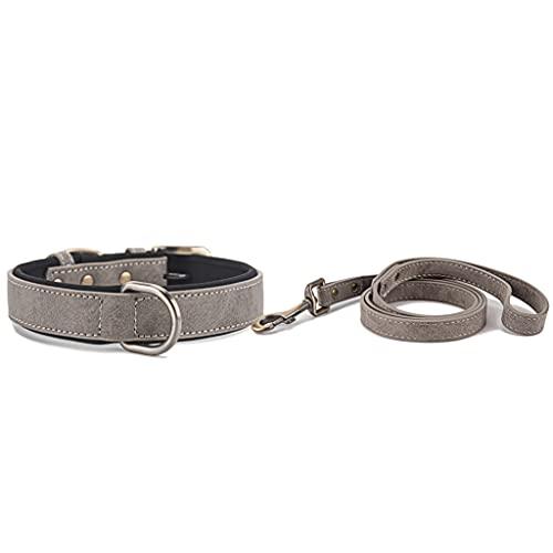 Soft Neoprene Padded Dog Collar with Leash, Elegant Adjustable Pet Collars, Breathable Comfortable Microfiber Dogs Collar for Small Medium Large Dog, Grey XS