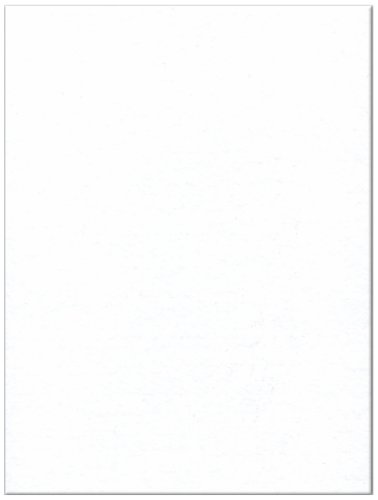 12-Piece Kunin Eco-fi Friendlyfelt-Stiffened, 9-Inch by 12-Inch, White