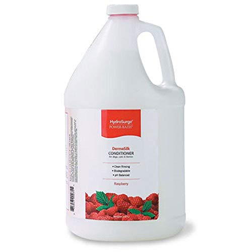 Hydrosurge Raspberry Dermasilk Cond Gallon
