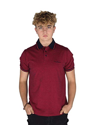 Pierre Cardin Mens Engineered Thin Stripe Polo with Signature Embroidery (Large, Red/Navy)