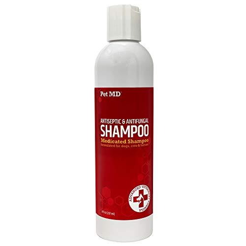 Pet MD Antiseptic & Antifungal Shampoo for Dogs, Cats, & Horses - Medicated Dog Shampoo with Ketoconazole & Chlorhexidine - Mange Treatment, Anti Itch, Allergies, Yeast, Ringworm, & Acne - 8 oz