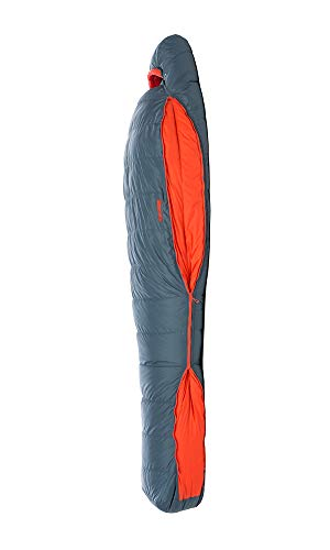 Big Agnes Torchlight Sleeping Bag w/600 DownTek for Backpacking and Camping, 20 Degree, Regular