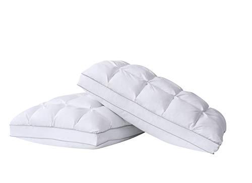 Charisma Luxe Down Alternative Gel Filled Chamber 2-Pack Pillow Standard Size