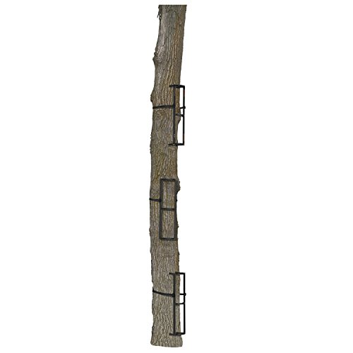 Muddy Stagger Step 3 Pack- Great for Crooked or Leaning Trees