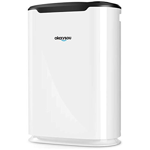 Okaysou AirMax8L Air Purifiers with Ultra-Duo Two Filters, Medical Grade H13 True HEPA for Home Allergies Pets Hair Smokers Odors, Remove 99.97% Mold Dust Pollen VOCs for Large Room, Bedroom,500 Sq. Ft.