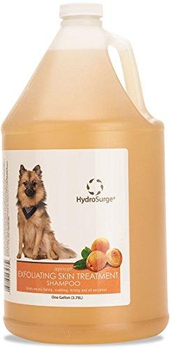 Oster HydroSurge Exfoliating Skin Treatment Shampoo Apricot 1 Gallon