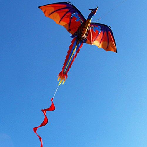 LANDUM Kite for Children, 3D Dragon Kite with Tail Kites for Adult Kites Flying Outdoor 100m Kite Line
