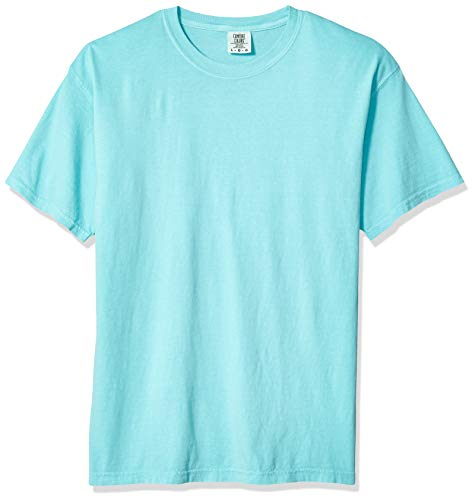 Comfort Colors Men's Adult Short Sleeve Tee, Style 1717, Chalky Mint, Large