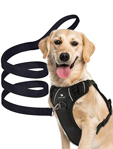 Braver Dog Harness+a Leash Set, 11-27 Pound, No-Pull with 2 Leash Clips,Adjustable Soft Padded Dog Vest,Reflective No-Choke Pet Oxford Vest with Easy Control Handle for Medium Dogs(S, Black)