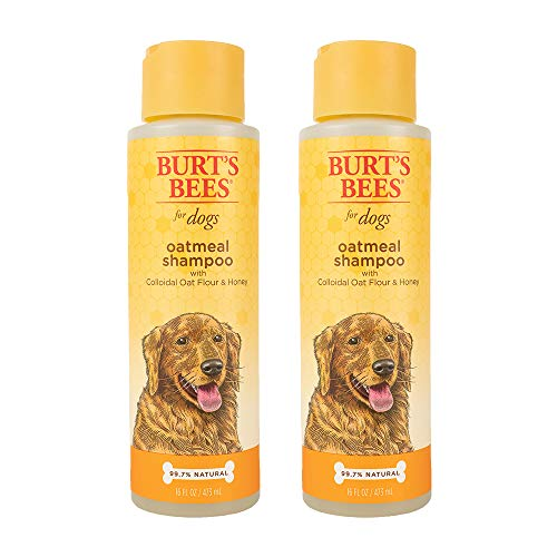 Burt's Bees for Pets All Natural Oatmeal Shampoo for Dogs | Made with Colloidal Oat Flour and Honey | Moisturizing Oatmeal Dog Shampoo, 16 Ounces, Pack of 2 (FF7258AMZ2)