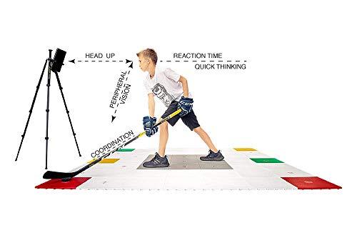 Hockey Revolution Professional Stickhandling Fitness Training Surface (360 Zone)