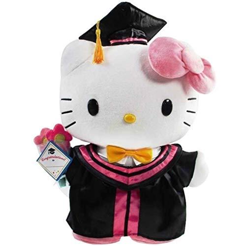 Daniel 9' Hello Kitty Cat Graduation Plush Stuffed Animal Grad Gift