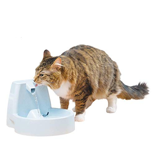 PetSafe Drinkwell Original Pet Fountain, 50 oz Capacity Fresh Filtered Water Dispenser for Cats and Medium Sized Dogs, Filters Included,Gray,3.12 lbs (White Box Packaging)