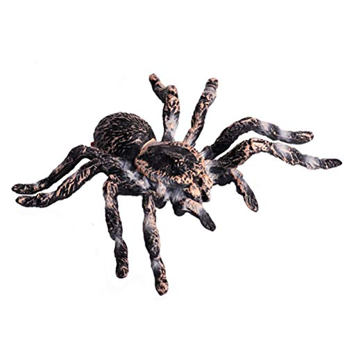 FLORMOON Realistic Animal Figures - Spider Action Model Lifelike Insect Toy Figures - Educational Learning Toys Birthday Gift Set for Boys Girls Kids Toddlers