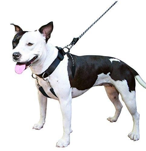 SPORN Dog Harness, Black, Large