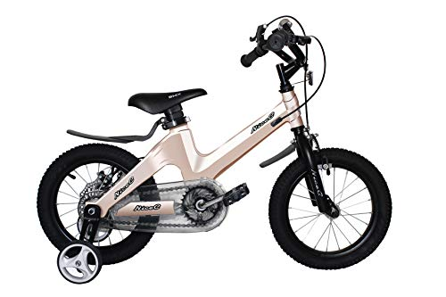 NiceC BMX Kids Bike with Dual Disc Brake for Boy and Girl 12-14-16-18 inch Training Wheels (14' Champagne)