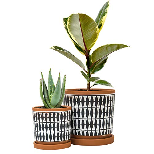 Set of 2, Geometric Seamless Design Terracotta Planter Pot, 4 Inch and 6 Inch, Ceramic Plant Pot with Drainage Hole and Tray, Pottery Red/Black