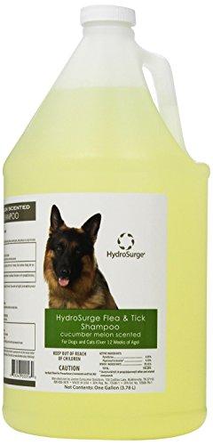 Oster HydroSurge Flea and Tick Pet Shampoo