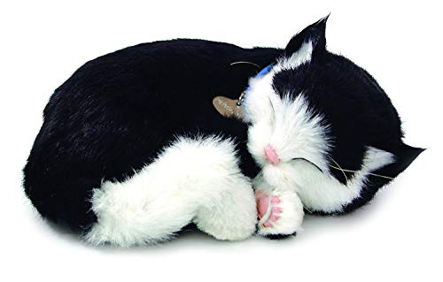 Original Petzzz Black and White Shorthair Kitten, Realistic, Lifelike Stuffed Interactive Pet Toy, Breathing Pets, Companion Pet Cat with 100% Handcrafted Synthetic Fur – Perfect Petzzz
