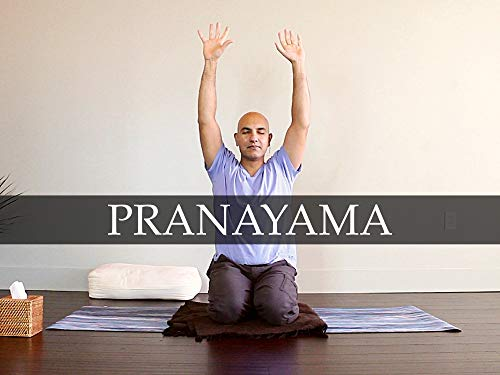 Pranayama: Directing Your Life's Purpose   Days 8, 18, and 28