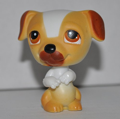 Jack Russell Puppy Dog #40 (Orange/Brown Accents) - Littlest Pet Shop (Retired) Collector Toy - LPS Collectible Replacement Single Figure - Loose (OOP Out of Package & Print)
