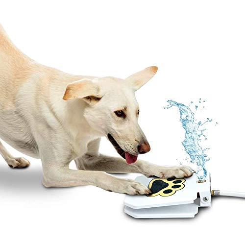 Dog Outdoor Dog Drinking Water Fountain Step On, Easy Paw Activated Drinking Pet Dispenser, Fresh Water, Sturdy, Easy to Use by Trio Gato