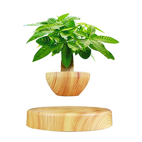 Ozzptuu Creative Magnetic Levitating Air Bonsai Pot Prsent Floating Plant Pot for Home Office Display Decoration (Not Include Plant)