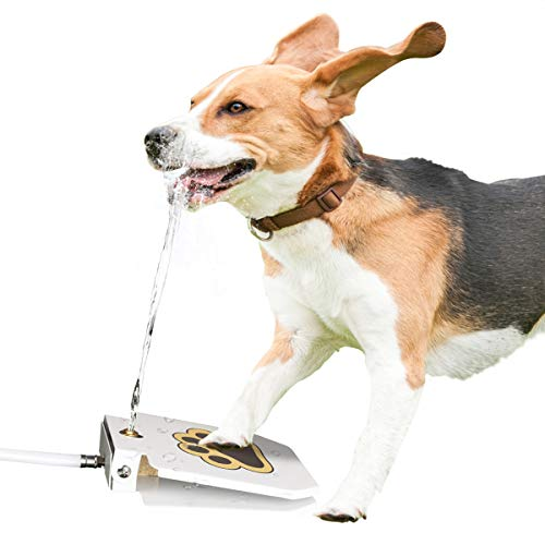 ICOKEE Outdoor Dog Water Fountain, Dog Toy, Pet Water Dispenser, Brass Valve, Steel Pedal, Step On Easy Paw Activated, Provide Fresh Drinking Water