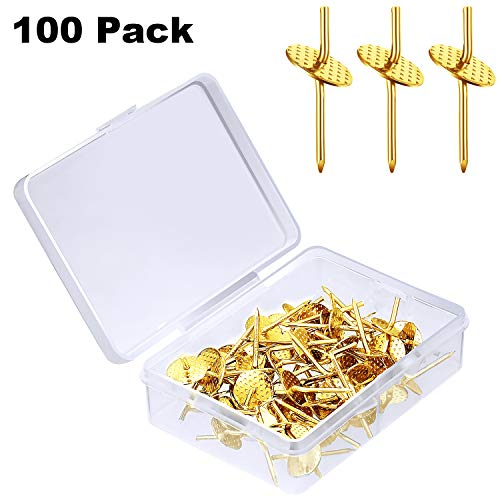 One Step Hangers 20 lbs Professional Plaster Picture Hanging Pins Quick Picture Hangers Picture Frame Hangers on Wooden Drywall (100 Pieces, Gold)