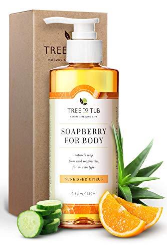 Sensitive Skin Body Wash by Tree to Tub - pH 5.5 Balanced Moisturizing Body Wash. Eczema Body Wash for Women and Men, with Wild Soapberries Organic Aloe Vera 8.5 oz