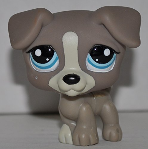 Jack Russell #1832 (Gray) - Littlest Pet Shop (Retired) Collector Toy - LPS Collectible Replacement Single Figure - Loose (OOP Out of Package & Print)