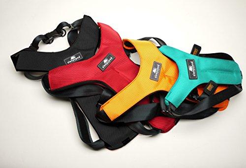 Sleepypod ClickIt Sport Crash-Tested Car Safety Dog Harness (XLarge, Strawberry Red)