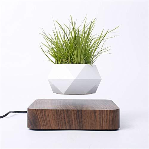 C&G Levitating Air Bonsai Pot Rotation Flower Pot Planters Magnetic Levitation Suspension Floating Pot Potted Plant Home Desk Decor in Flower Pots & Planters(NOT Include Plant),A