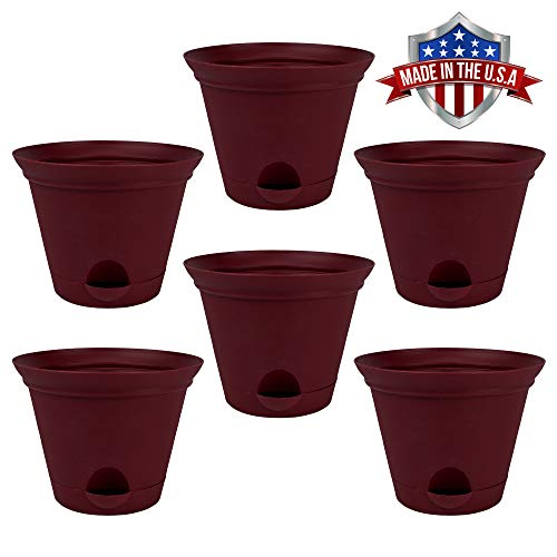 6 Pack 7-in. Salsa Red Plastic Self Watering Flower Pot or Garden Planter