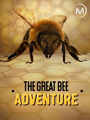 The Great Bee Adventure