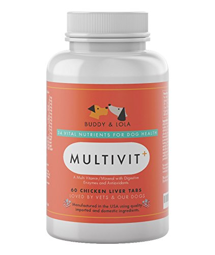 Dog Multivitamin for Senior Dogs Provides Nutrients, Calcium, Digestive Enzymes & Antioxidants. Chicken Liver Chewable Supplements, 60 Count