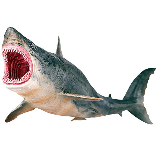 Large Shark Toys Megalodon, Plastic Assorted Ocean Animal Shark Figurine Realistic Sea Creature Cognitive Toy Shark Figure for Collection Gift, Bath Toy, Cake Topper