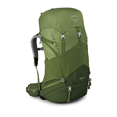 Osprey Ace 75 Kid's Backpacking Backpack, Venture Green