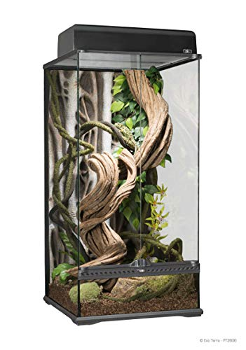 Exo Terra Natural Glass Terrarium, Small X-Tall