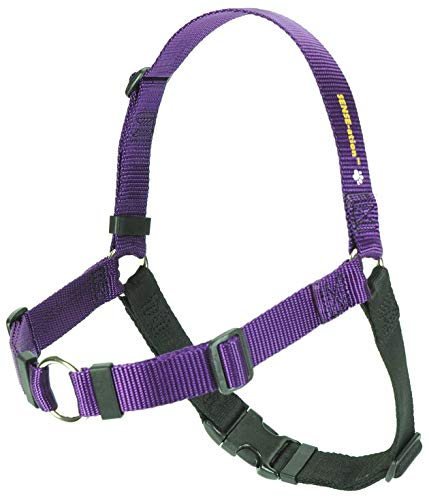 Softouch Sense-ation No-Pull Dog Harness - 1' Medium/Large