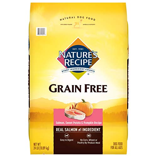 Nature's Recipe Grain Free Dry Dog Food, Salmon, Sweet Potato & Pumpkin Recipe, 24 Pounds, Easy to Digest