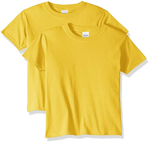 Gildan unisex child Heavy Cotton Youth T-shirt, 2-pack T Shirt, Daisy, X-Small US
