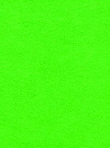 12-Piece Kunin Eco-fi Friendlyfelt-Stiffened, 9-Inch by 12-Inch, Apple Green