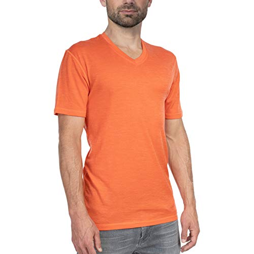 Woolly Clothing Men's Merino Wool V-Neck Tee Shirt - Everyday Weight - Wicking Breathable Anti-Odor M TRM