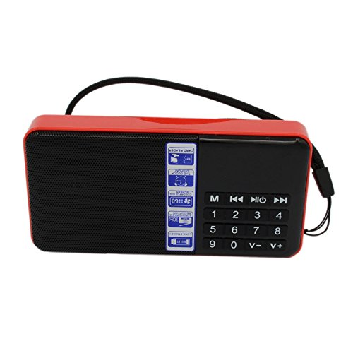 Hi-Rice SD-111 Portable FM Radio Time Display Clock Support USB Disk/Micro SD/TF Card Mp3 Player Digital Speakers (Red)