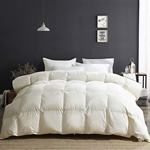 APSMILE Luxury All Season Goose Down Comforter Full/Queen Size Duvet Insert - 100% Organic Cotton, 650 Fill Power Hypoallergenic Medium Warmth, Beige White